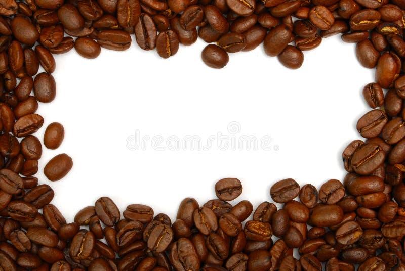 καφές συνόρων φασολιών στοκ φωτογραφία με δικαίωμα ελεύθερης χρήσης
