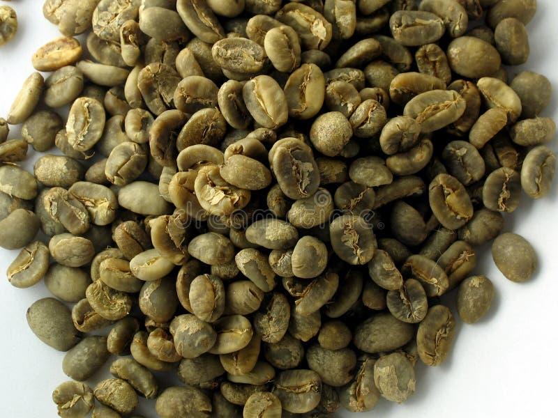 καφές φασολιών πράσινος στοκ φωτογραφία