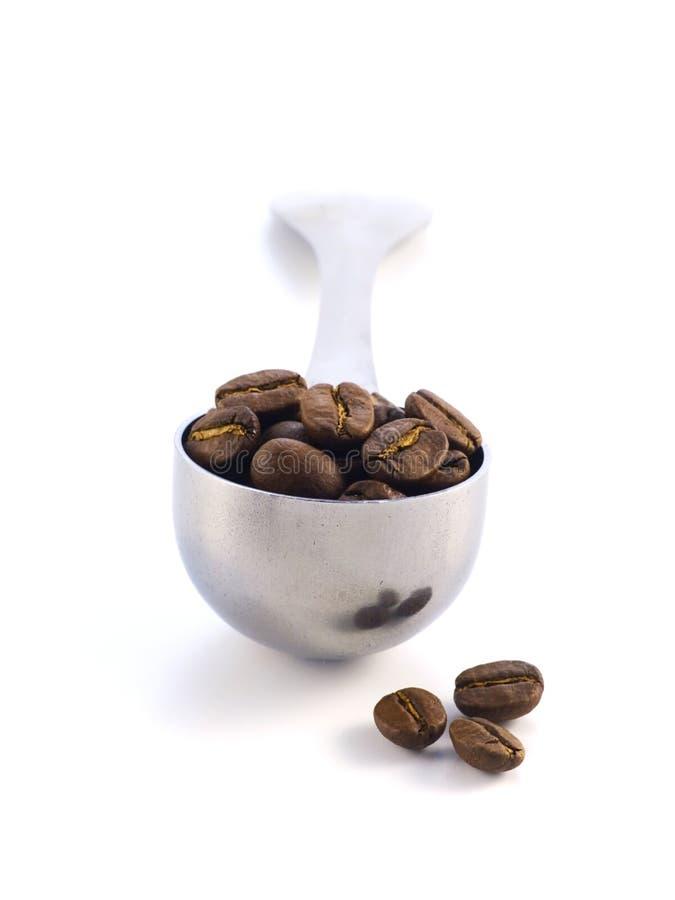 καφές φασολιών στοκ φωτογραφία με δικαίωμα ελεύθερης χρήσης