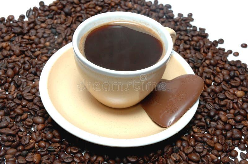 Download καφές φρέσκος στοκ εικόνα. εικόνα από ποτό, φασολιών - 13188899
