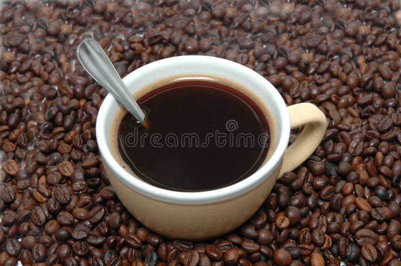 Download καφές στοκ εικόνα. εικόνα από ένας, σπόρος, φλυτζάνι - 13188869
