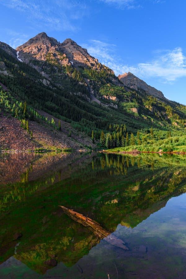 Καφέ αγριότητα βουνών κουδουνιών στοκ φωτογραφία με δικαίωμα ελεύθερης χρήσης