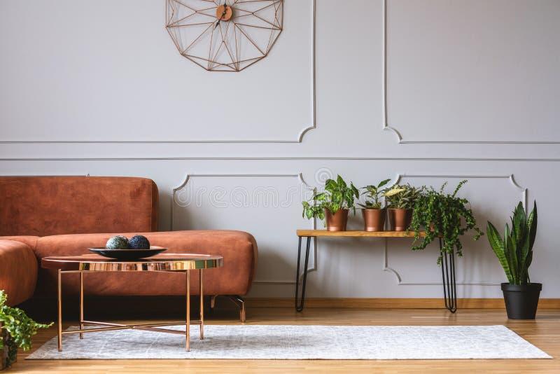 Καφετής άνετος καναπές γωνιών στο κομψό καθιστικό στοκ φωτογραφία