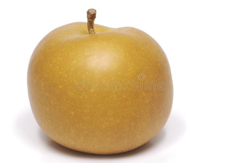 καφετής μήλων που απομονώ& στοκ φωτογραφίες