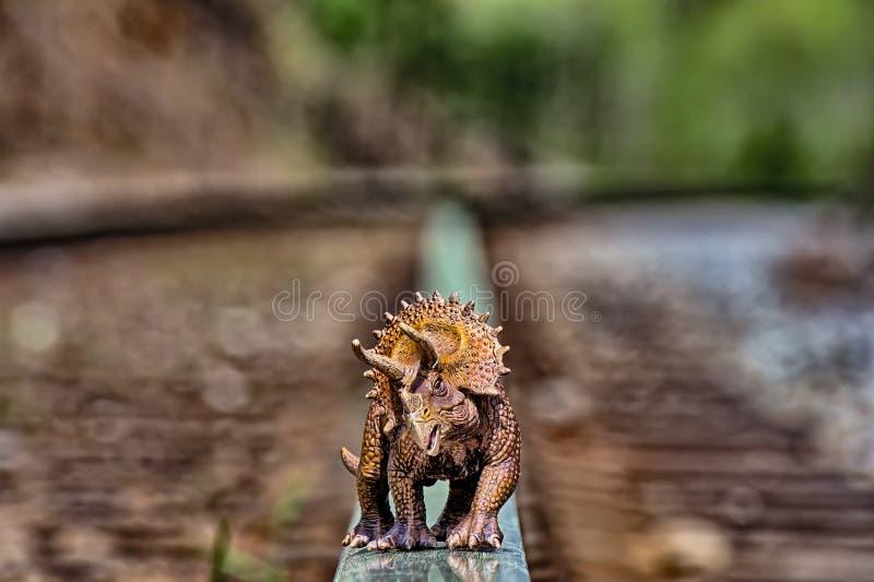 Καφετής triceratops δεινόσαυρος που περπατά στις διαδρομές σιδηροδρόμου στοκ εικόνα