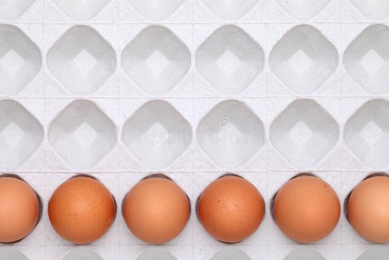 Καφετί αυγό με τη συσκευασία στοκ φωτογραφία με δικαίωμα ελεύθερης χρήσης