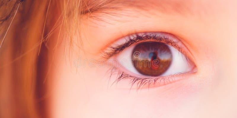 Καφετί μάτι του κοκκινομάλλους κοριτσιού, μακρο πυροβολισμός στοκ εικόνα