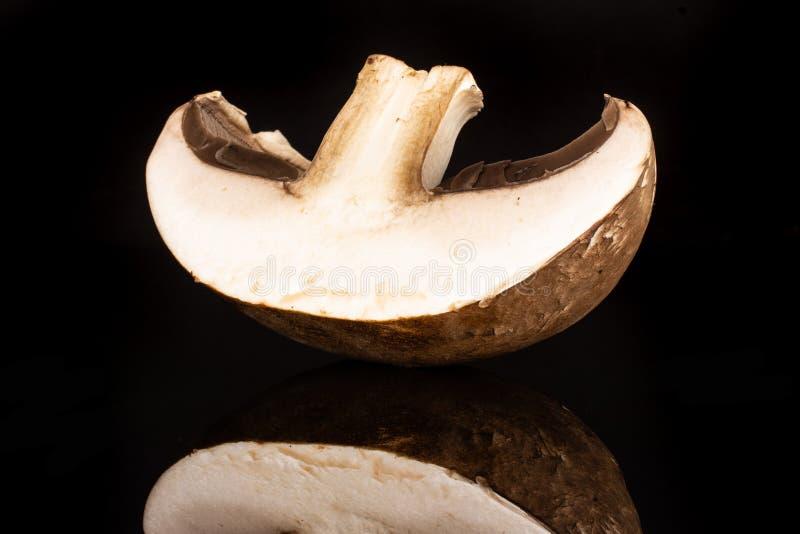 Καφετί μανιτάρι bortobello που απομονώνεται στο μαύρο γυαλί στοκ εικόνα