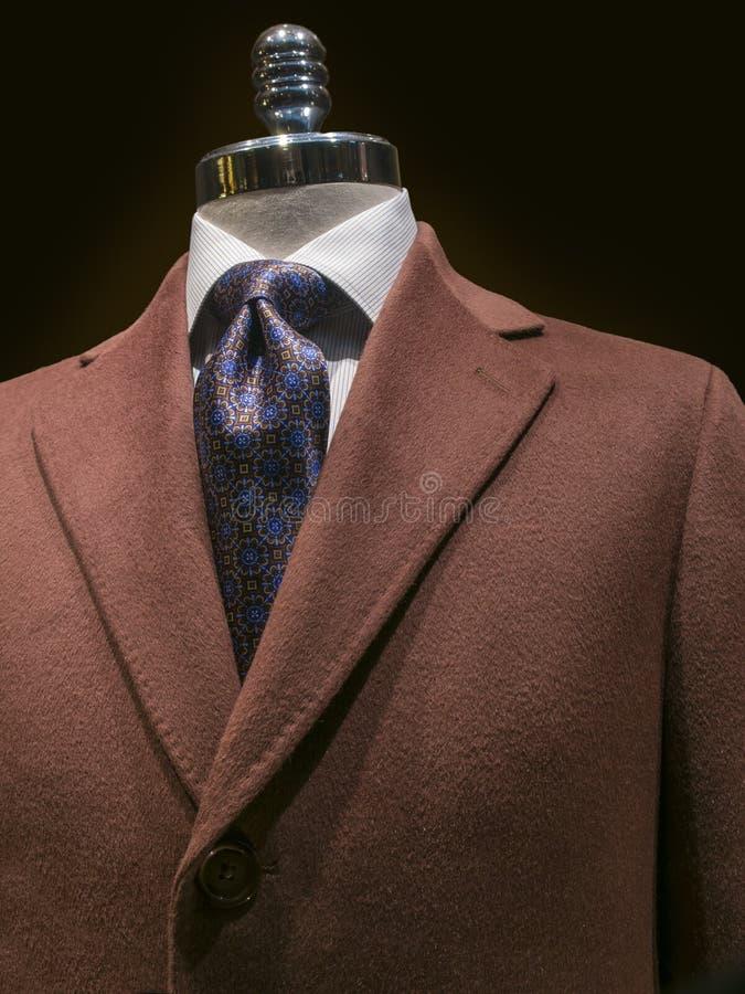 Καφετί παλτό κασμιριού (κάθετο) στοκ φωτογραφία