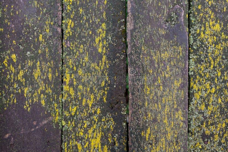 Καφετί παλαιό ξύλινο υπόβαθρο σύστασης τοίχων σανίδων στοκ εικόνες