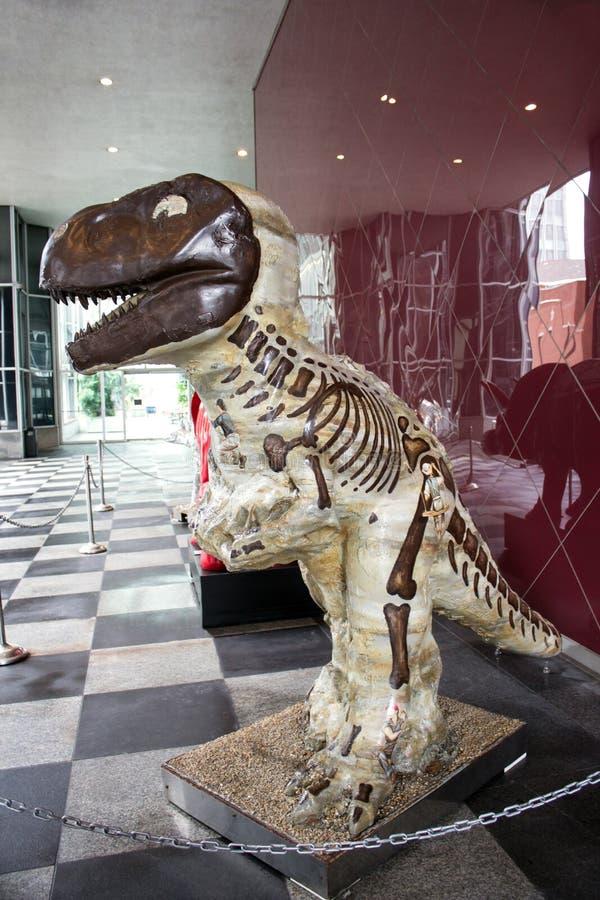 Καφετί πορτρέτο δεινοσαύρων στοκ εικόνες