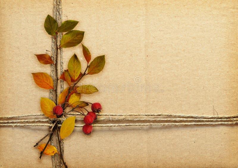 Καφετί χαρτόνι που δένεται με το σχοινί, τα φύλλα φθινοπώρου και τα κόκκινα μούρα στοκ εικόνες