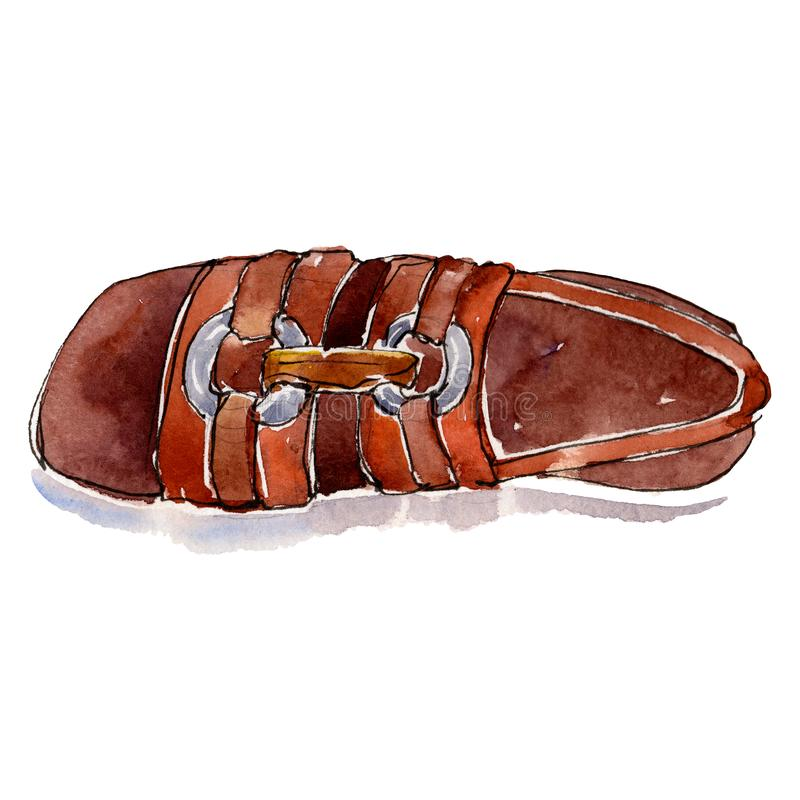 Καφετιά απεικόνιση γοητείας σκίτσων παπουτσιών σε ένα απομονωμένο ύφος στοιχείο watercolor Σύνολο υποβάθρου Watercolour διανυσματική απεικόνιση