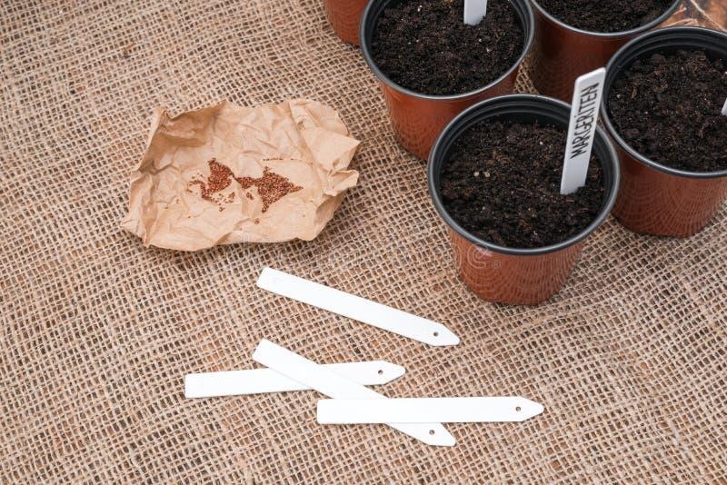 Καφετιά δοχεία με το μαύρο χώμα, τις άσπρους ετικέτες και τους σπόρους των εγκαταστάσεων sackcloth στο υπόβαθρο στοκ φωτογραφία με δικαίωμα ελεύθερης χρήσης