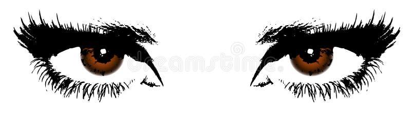 Καφετιά μάτια γυναικών διανυσματική απεικόνιση