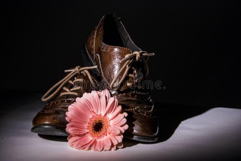 Καφετιά παπούτσια με τα λουλούδια στοκ εικόνα