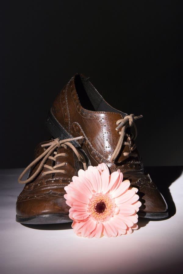 Καφετιά παπούτσια με τα λουλούδια στοκ εικόνα με δικαίωμα ελεύθερης χρήσης