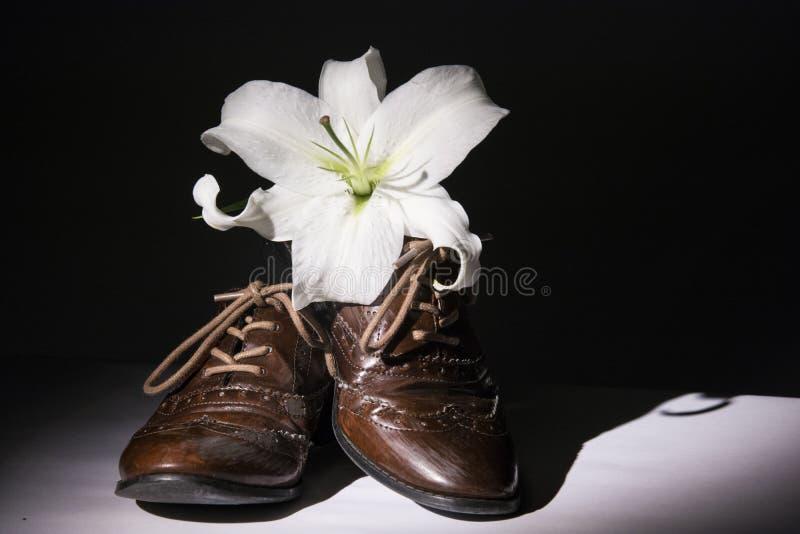 Καφετιά παπούτσια με τα λουλούδια στοκ εικόνες με δικαίωμα ελεύθερης χρήσης
