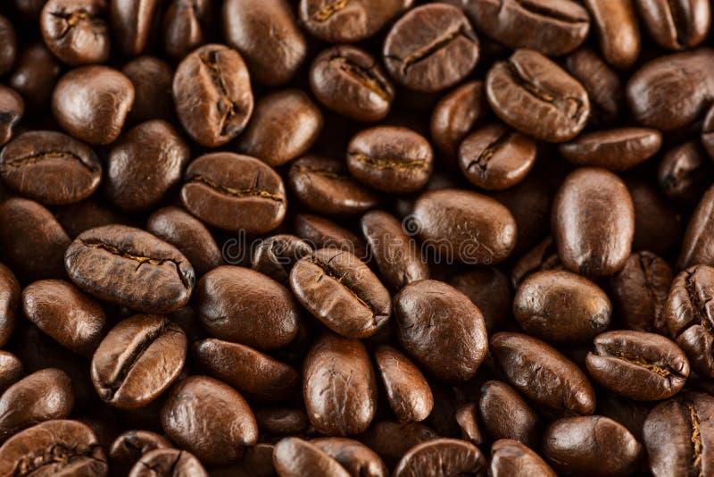 Καφετιά ψημένα φασόλια καφέ, σπόρος στο σκοτεινό υπόβαθρο Άρωμα, μαύρο ποτό καφεΐνης Απομονωμένο κινηματογράφηση σε πρώτο πλάνο ε στοκ φωτογραφία