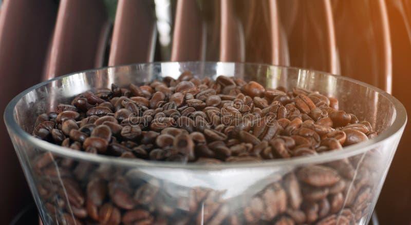 Καφετιά ψημένα φασόλια καφέ στο κύπελλο στοκ φωτογραφία
