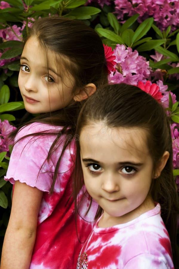 καφετιά eyed κορίτσια στοκ φωτογραφία με δικαίωμα ελεύθερης χρήσης