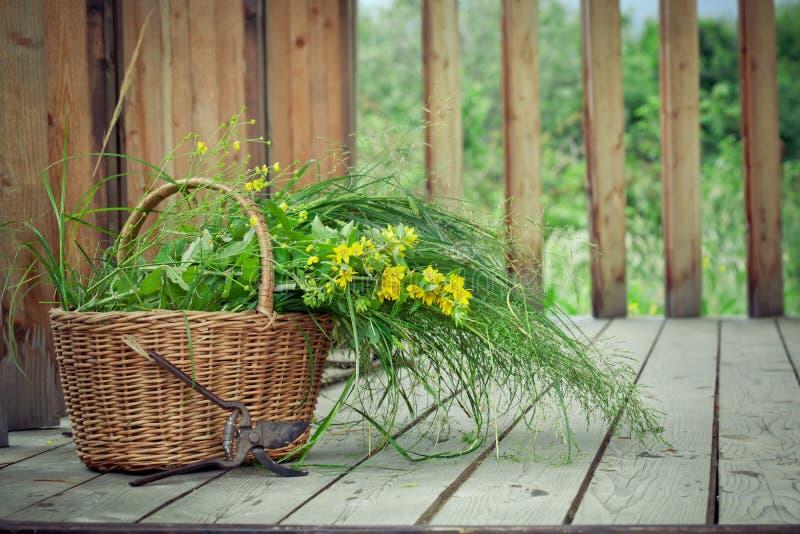 Καλάθι των άγριων λουλουδιών και των παλαιών ψαλίδων περικοπής στοκ φωτογραφία