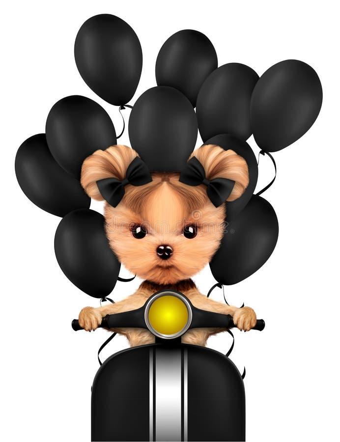 Καλή συνεδρίαση κουταβιών στη μοτοσικλέτα με τα μπαλόνια διανυσματική απεικόνιση