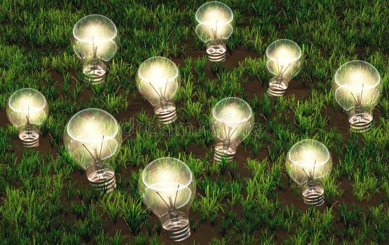 Καλλιέργεια των αναμμένων λαμπών φωτός διανυσματική απεικόνιση