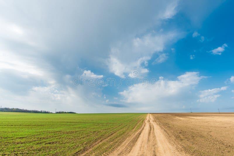 Καλλιεργημένο πράσινο λιβάδι αγροτική σκηνή στοκ φωτογραφία με δικαίωμα ελεύθερης χρήσης