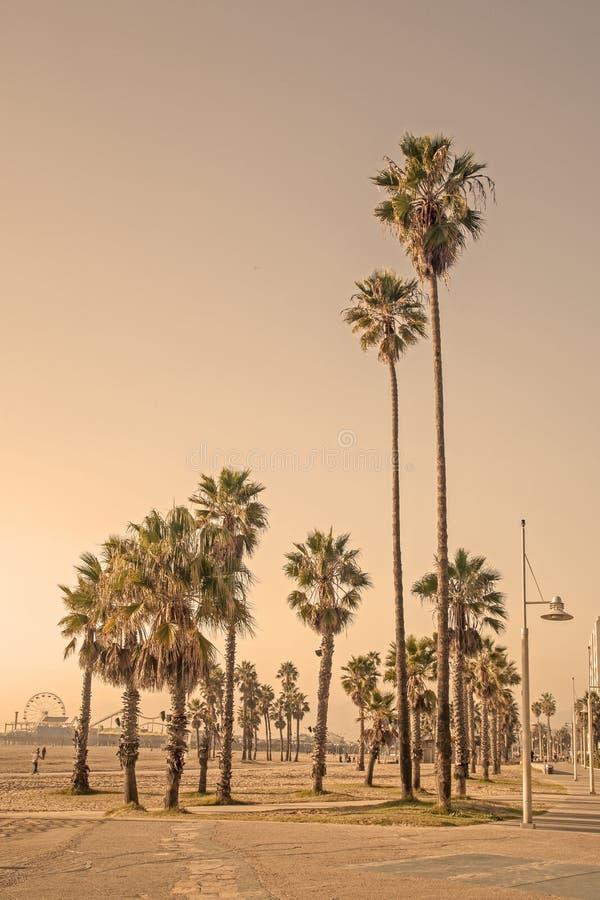 Καλοκαίρι παραλιών - Λος Άντζελες, Καλιφόρνια στοκ φωτογραφίες