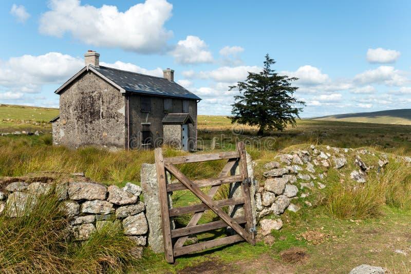 Καλοκαίρι σε Dartmoor στοκ εικόνες με δικαίωμα ελεύθερης χρήσης