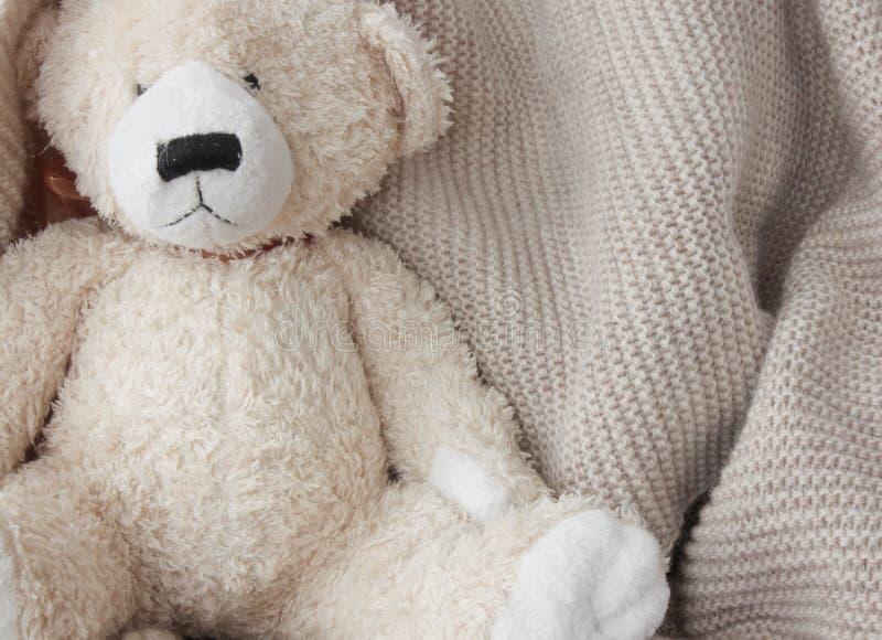 Καλός teddy αντέχει στοκ εικόνες
