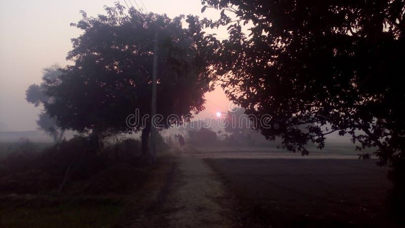 καλό πρωί στοκ φωτογραφία με δικαίωμα ελεύθερης χρήσης