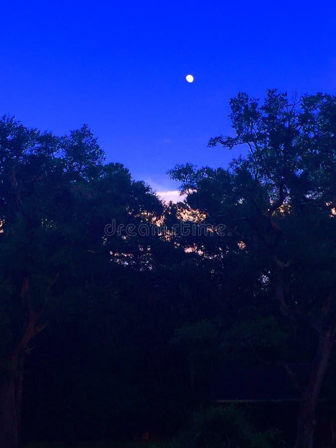 Καλύτερα τη νύχτα στοκ φωτογραφία με δικαίωμα ελεύθερης χρήσης