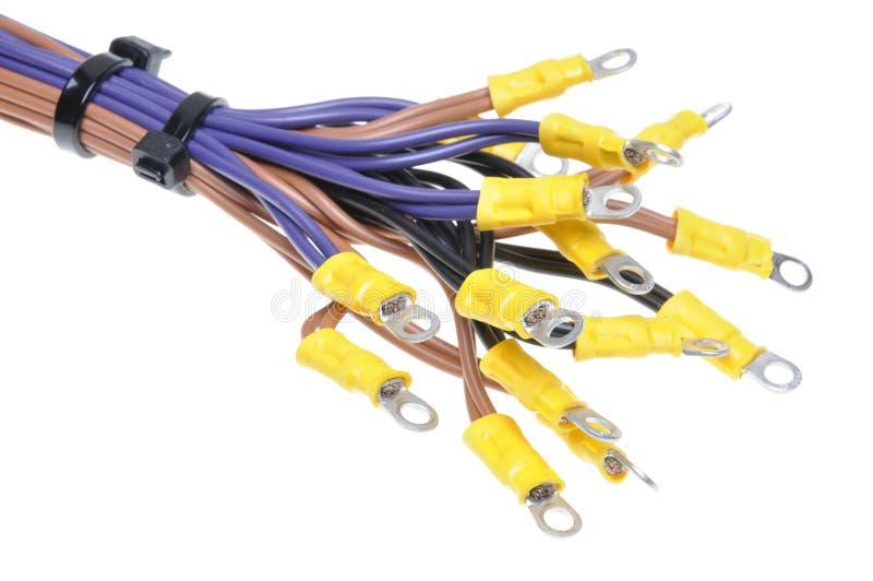 Καλώδια με τα τερματικά που χρησιμοποιούνται στο ηλεκτρικό σύστημα καλωδίωσης στοκ φωτογραφίες με δικαίωμα ελεύθερης χρήσης
