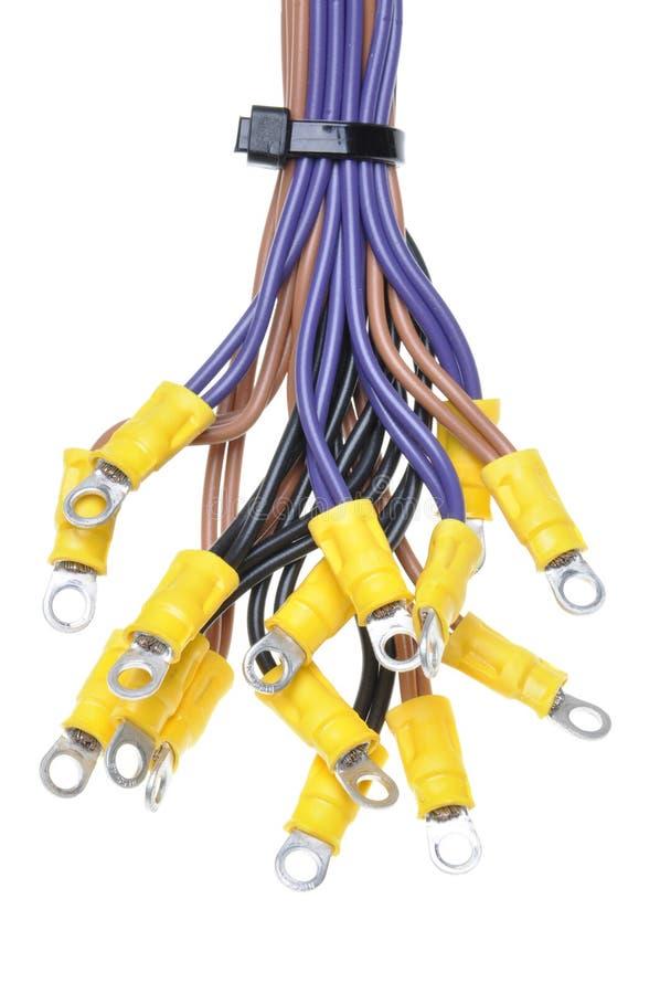 Καλώδια με τα τερματικά που χρησιμοποιούνται στο ηλεκτρικό σύστημα καλωδίωσης στοκ φωτογραφία με δικαίωμα ελεύθερης χρήσης