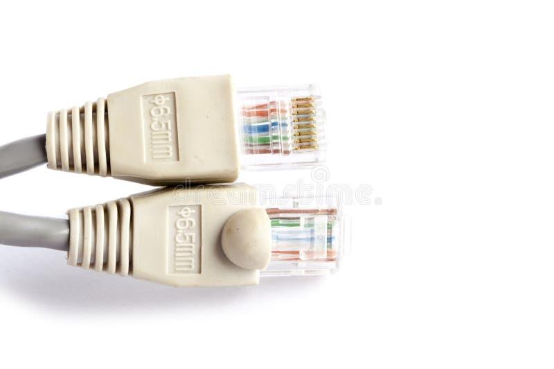 Καλώδιο δικτύων στο άσπρο υπόβαθρο στοκ φωτογραφία
