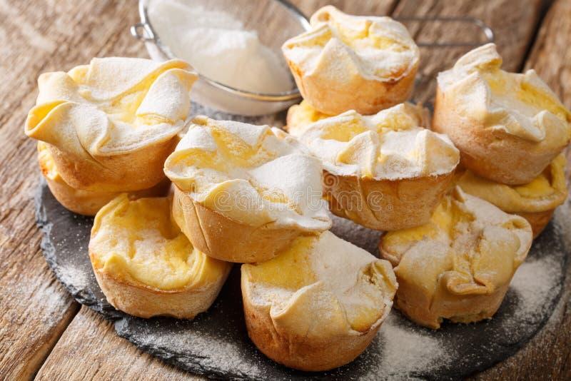 Κεκάκια μαλακίων με τυρί ρικότα που έχει τυλιχθεί με ζάχαρη σε σκόνη, σε πλακόστρωτο πλακίδιο οριζόντια στοκ φωτογραφία με δικαίωμα ελεύθερης χρήσης