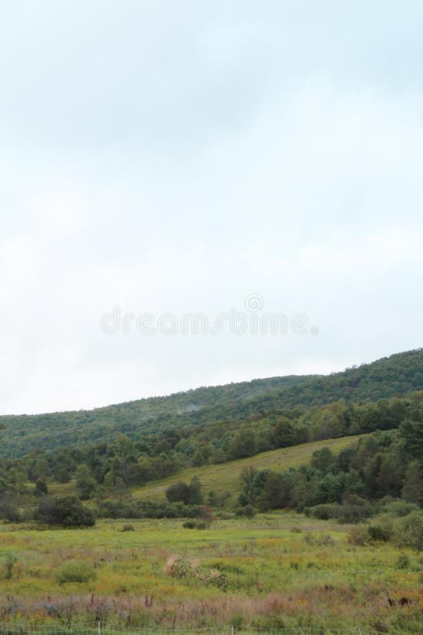 Κεκλιμένη βουνοπλαγιά με τα δέντρα και πράσινο λιβάδι το πρόωρο φθινόπωρο στοκ φωτογραφία με δικαίωμα ελεύθερης χρήσης