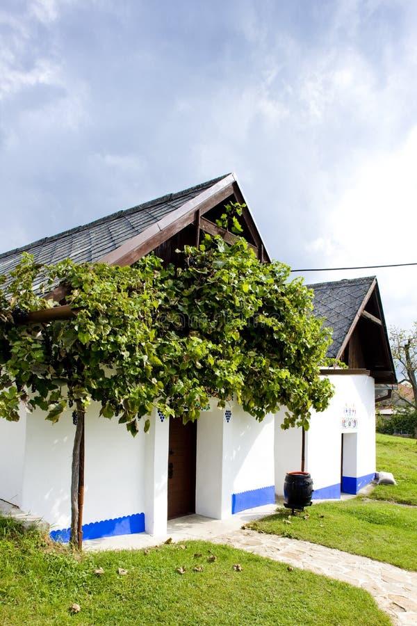κελάρια κρασιού, λοβός svatym Antoninkem, Δημοκρατία της Τσεχίας Blatnice στοκ φωτογραφίες με δικαίωμα ελεύθερης χρήσης