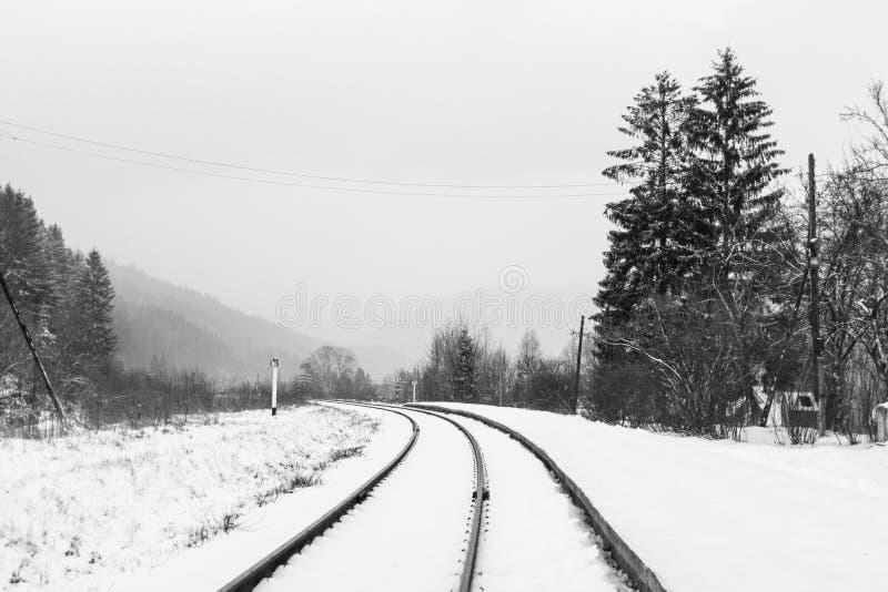Κενές ράγες στο χειμερινό αγροτικό τοπίο στοκ φωτογραφίες με δικαίωμα ελεύθερης χρήσης
