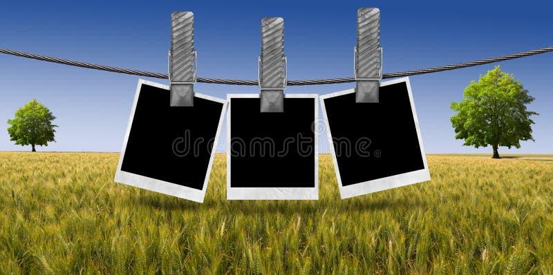 Κενές φωτογραφίες που κρεμούν στο σχοινί στην επαρχία διανυσματική απεικόνιση