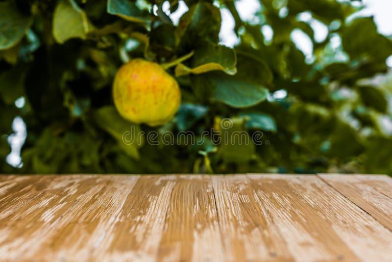 Κενή αγροτική ξύλινη επιτραπέζια κορυφή στο θολωμένο υπόβαθρο μήλων στοκ εικόνα με δικαίωμα ελεύθερης χρήσης