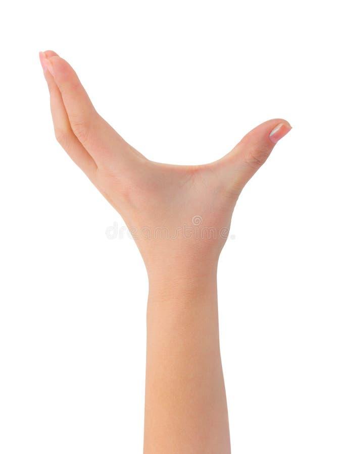 κενή γυναίκα χεριών στοκ εικόνες