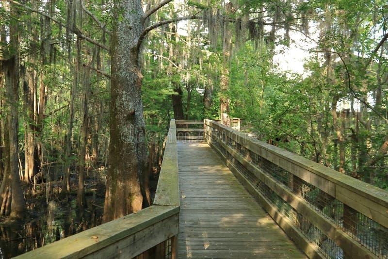 Κενή διάβαση πεζών σε μια γέφυρα παρατήρησης bayou στοκ εικόνες