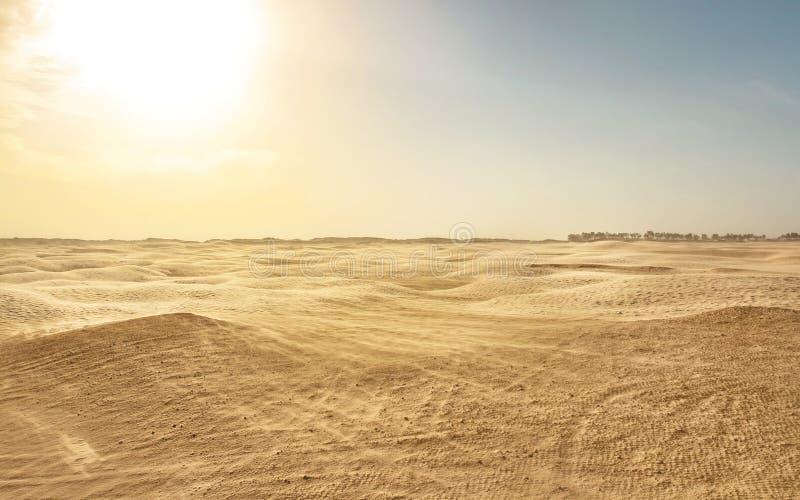 Κενή επίπεδη έρημος Σαχάρας, αέρας που διαμορφώνει τη σκόνη άμμου στοκ εικόνα με δικαίωμα ελεύθερης χρήσης