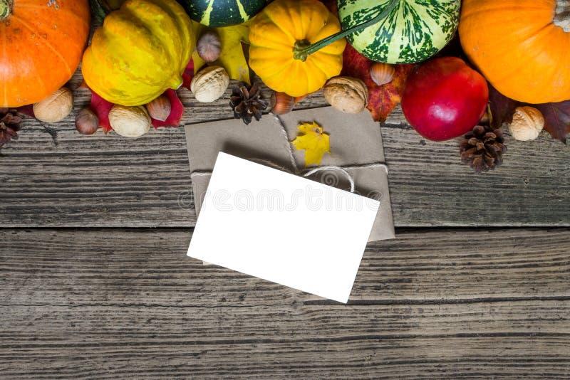 Κενοί ευχετήρια κάρτα και φάκελος με το υπόβαθρο πτώσης φθινοπώρου ημέρας των ευχαριστιών με τις συγκομισμένες κολοκύθες, μήλα, κ στοκ εικόνες