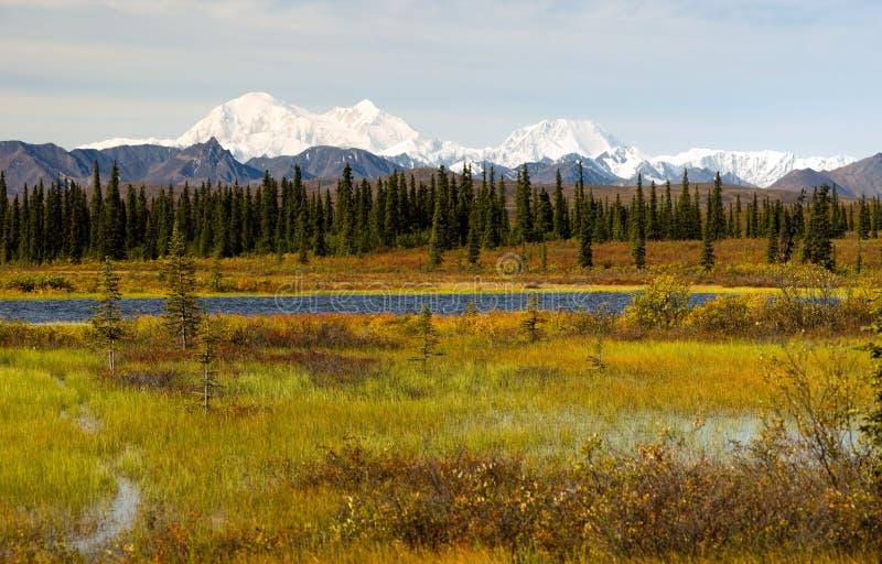 Κεντρικές λίμνες βουνών περιοχής αγριοτήτων της Αλάσκας σειράς Denali στοκ φωτογραφία