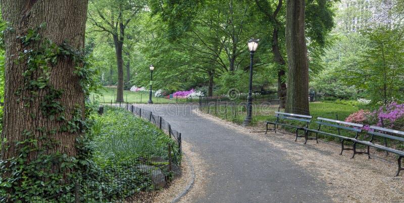 κεντρική άνοιξη πάρκων στοκ εικόνες