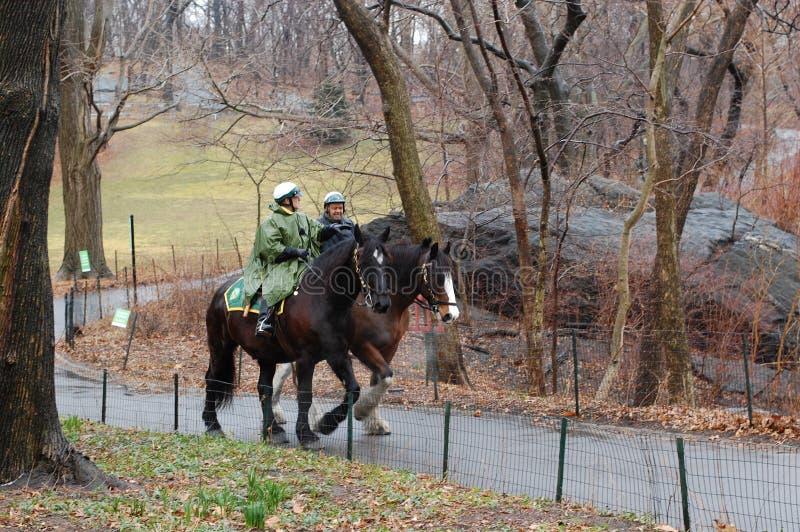 κεντρική περίπολος πάρκων αλόγων στοκ εικόνες με δικαίωμα ελεύθερης χρήσης